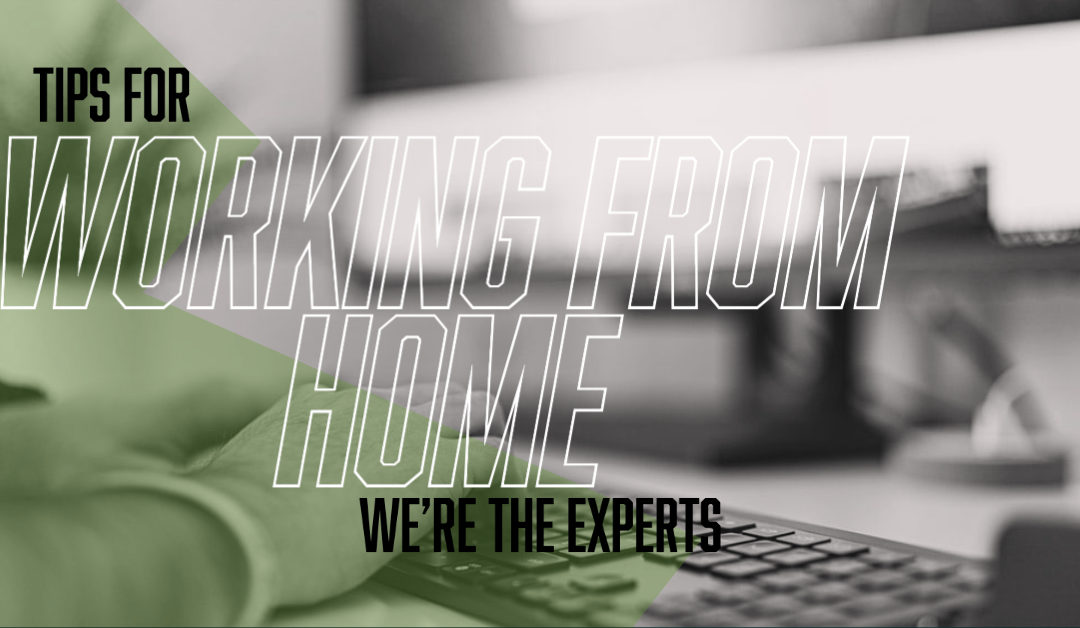 Tips for Working from Home: We're the Experts!